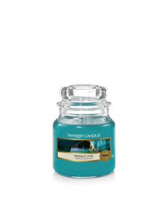 YANKEE CANDLE Easy MeltCups Midnight Jasmine