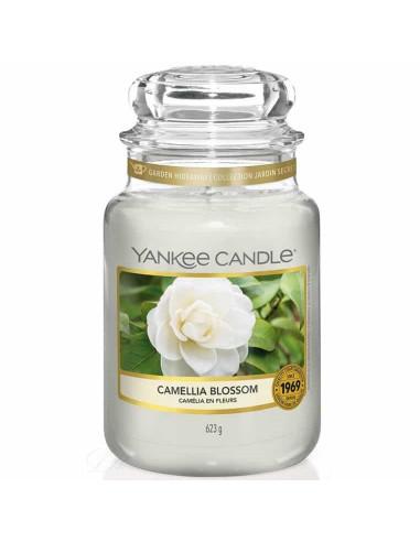 Camellia Blossom giara grande